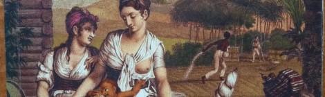 """Fortune des Isles  """"Lettres et souvenirs de l'isle de France"""""""